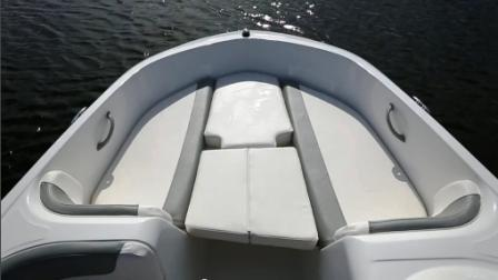 Bayliner-Element-XL-black-bug-01