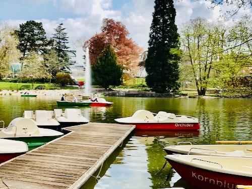 Tretboote auf einem Teich im Rhein Main Gebiet